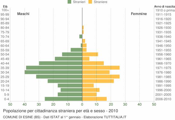 Grafico cittadini stranieri - Esine 2010
