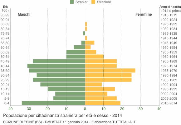 Grafico cittadini stranieri - Esine 2014
