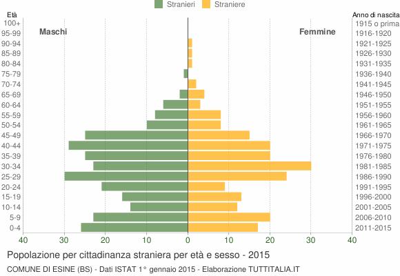 Grafico cittadini stranieri - Esine 2015