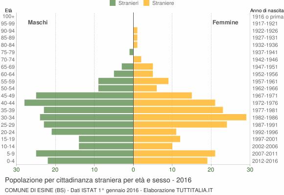 Grafico cittadini stranieri - Esine 2016