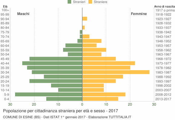 Grafico cittadini stranieri - Esine 2017
