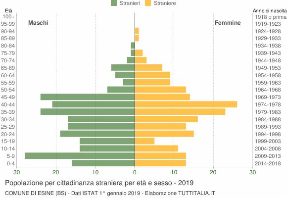 Grafico cittadini stranieri - Esine 2019