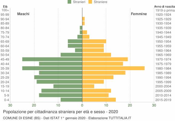 Grafico cittadini stranieri - Esine 2020