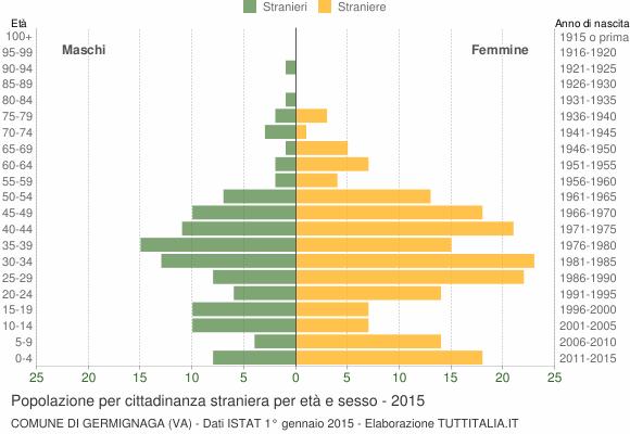Grafico cittadini stranieri - Germignaga 2015