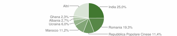 Grafico cittadinanza stranieri - Marmirolo 2019
