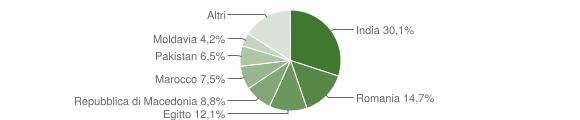 Grafico cittadinanza stranieri - Robecco d'Oglio 2019