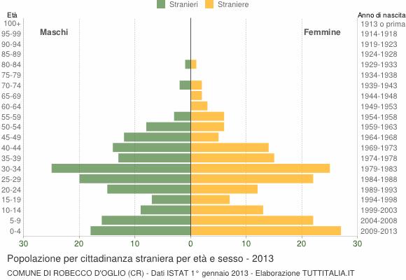 Grafico cittadini stranieri - Robecco d'Oglio 2013