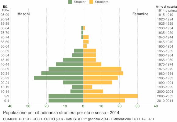 Grafico cittadini stranieri - Robecco d'Oglio 2014