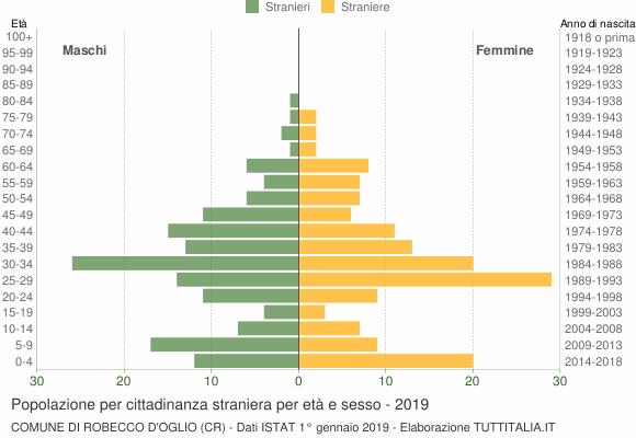 Grafico cittadini stranieri - Robecco d'Oglio 2019