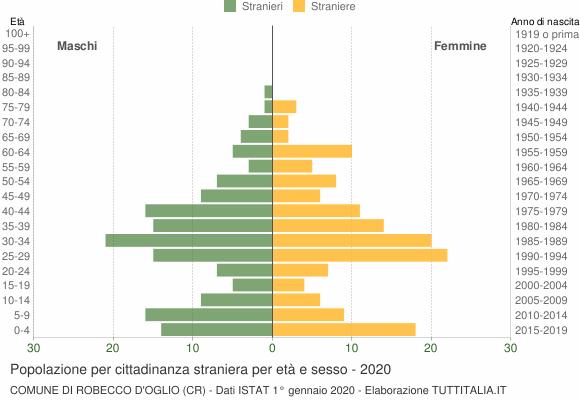 Grafico cittadini stranieri - Robecco d'Oglio 2020