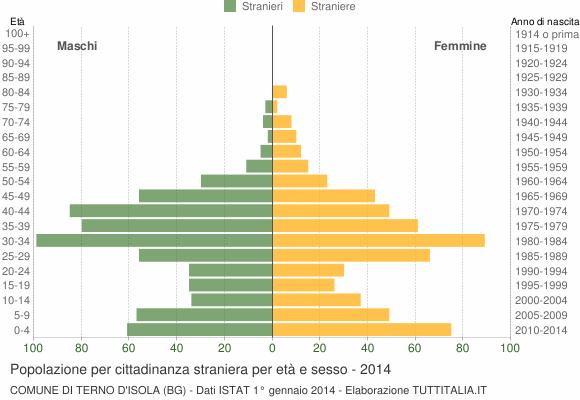 Grafico cittadini stranieri - Terno d'Isola 2014