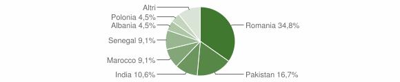 Grafico cittadinanza stranieri - Luzzana 2015