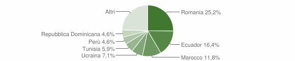 Grafico cittadinanza stranieri - Salerano sul Lambro 2010