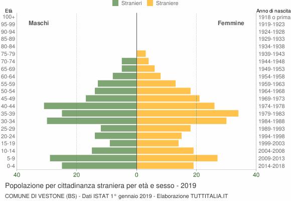 Grafico cittadini stranieri - Vestone 2019