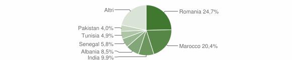 Grafico cittadinanza stranieri - Bariano 2011