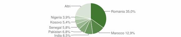 Grafico cittadinanza stranieri - Bariano 2019