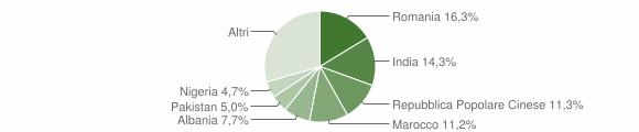 Grafico cittadinanza stranieri - Castiglione delle Stiviere 2018