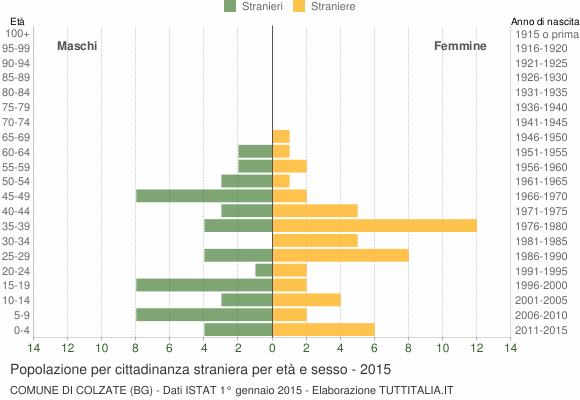 Grafico cittadini stranieri - Colzate 2015