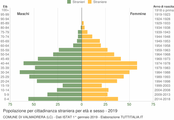 Grafico cittadini stranieri - Valmadrera 2019