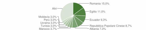 Grafico cittadinanza stranieri - Vermezzo con Zelo 2019