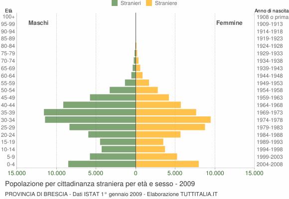 Grafico cittadini stranieri - 2009