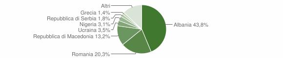 Grafico cittadinanza stranieri - Castelraimondo 2010