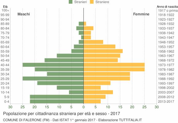 Grafico cittadini stranieri - Falerone 2017