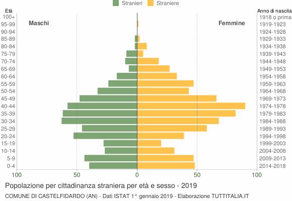 Grafico cittadini stranieri - Castelfidardo 2019