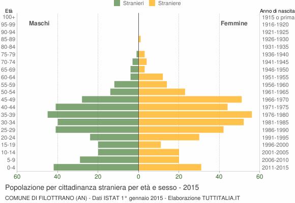 Grafico cittadini stranieri - Filottrano 2015
