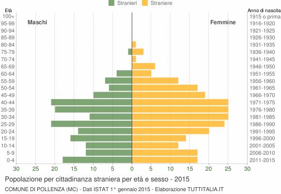 Grafico cittadini stranieri - Pollenza 2015