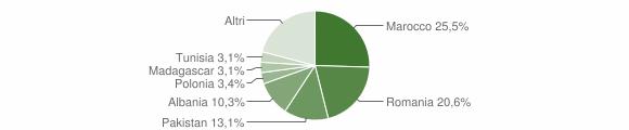 Grafico cittadinanza stranieri - Santa Maria Nuova 2012