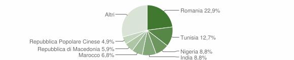 Grafico cittadinanza stranieri - Rosora 2010