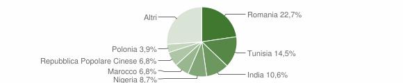 Grafico cittadinanza stranieri - Rosora 2011