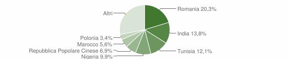 Grafico cittadinanza stranieri - Rosora 2012
