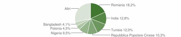 Grafico cittadinanza stranieri - Rosora 2014