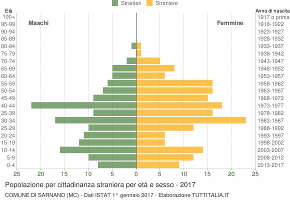 Grafico cittadini stranieri - Sarnano 2017