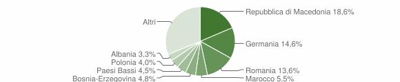 Grafico cittadinanza stranieri - Arcevia 2010