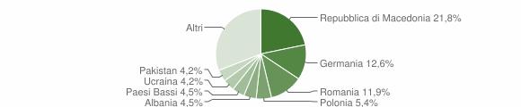 Grafico cittadinanza stranieri - Arcevia 2013