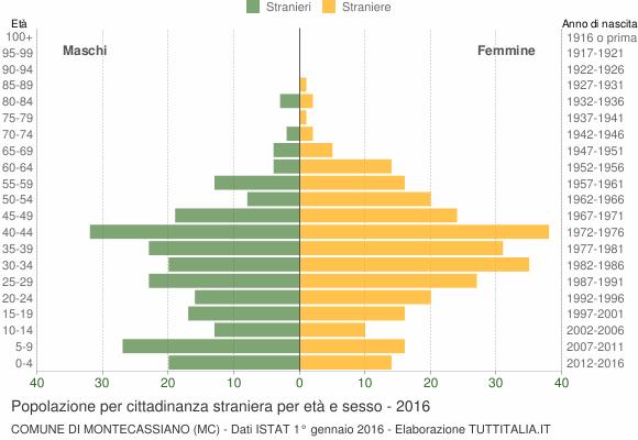 Grafico cittadini stranieri - Montecassiano 2016