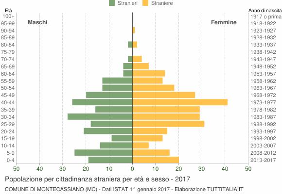 Grafico cittadini stranieri - Montecassiano 2017