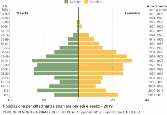 Grafico cittadini stranieri - Montecassiano 2019