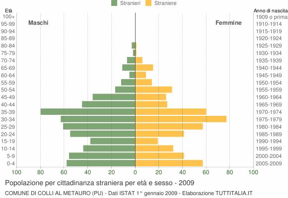 Grafico cittadini stranieri - Colli al Metauro 2009