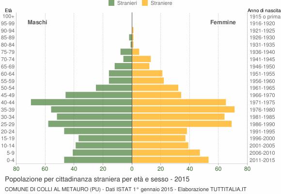 Grafico cittadini stranieri - Colli al Metauro 2015