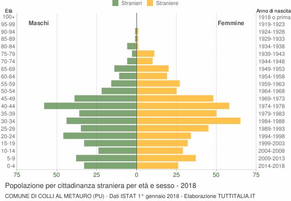 Grafico cittadini stranieri - Colli al Metauro 2018