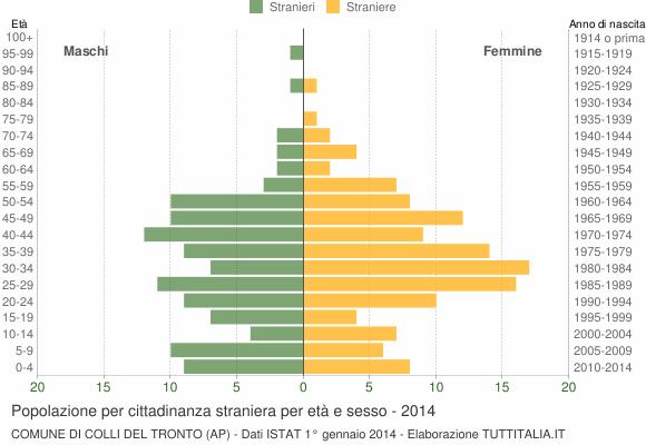 Grafico cittadini stranieri - Colli del Tronto 2014