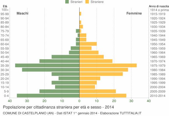 Grafico cittadini stranieri - Castelplanio 2014