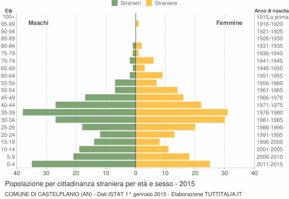 Grafico cittadini stranieri - Castelplanio 2015