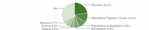 Grafico cittadinanza stranieri - Apiro 2010