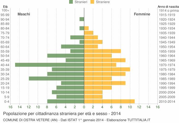 Grafico cittadini stranieri - Ostra Vetere 2014