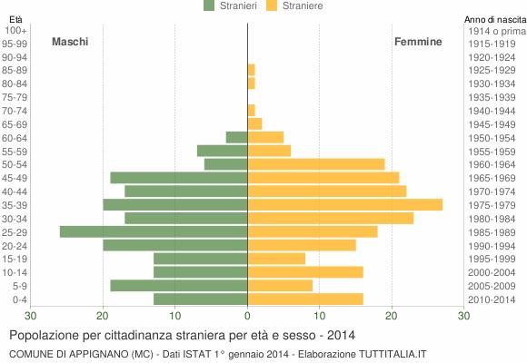 Grafico cittadini stranieri - Appignano 2014